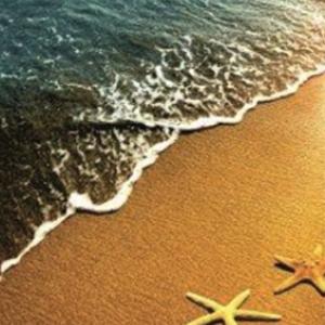 Душ завеса INTER CERAMIC звезди на плажа 141