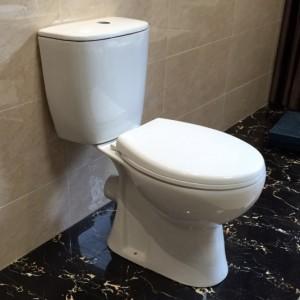 Порцеланов WC комплект Лариса - Тоалетна чиния Д.О., казанче и седалка - ICC 6573