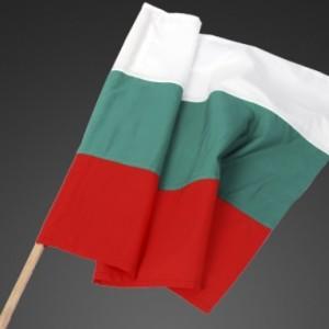 Знаме на България 50/83см. с дървена пръчка