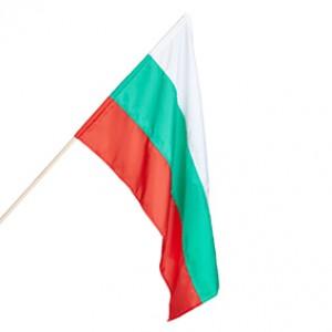 Знаме на България 24/40см.с дървена пръчка